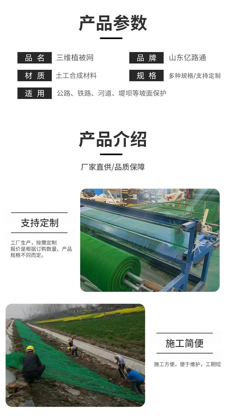 菏泽绿化环保三维植被网厂家直供