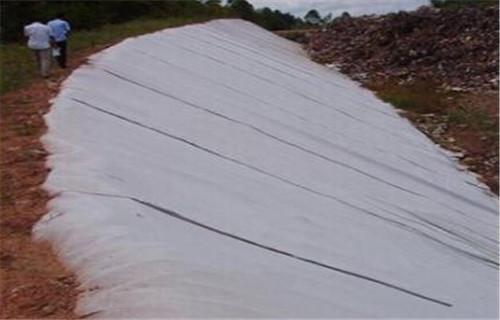 镇海聚酯纤维土工布供应商